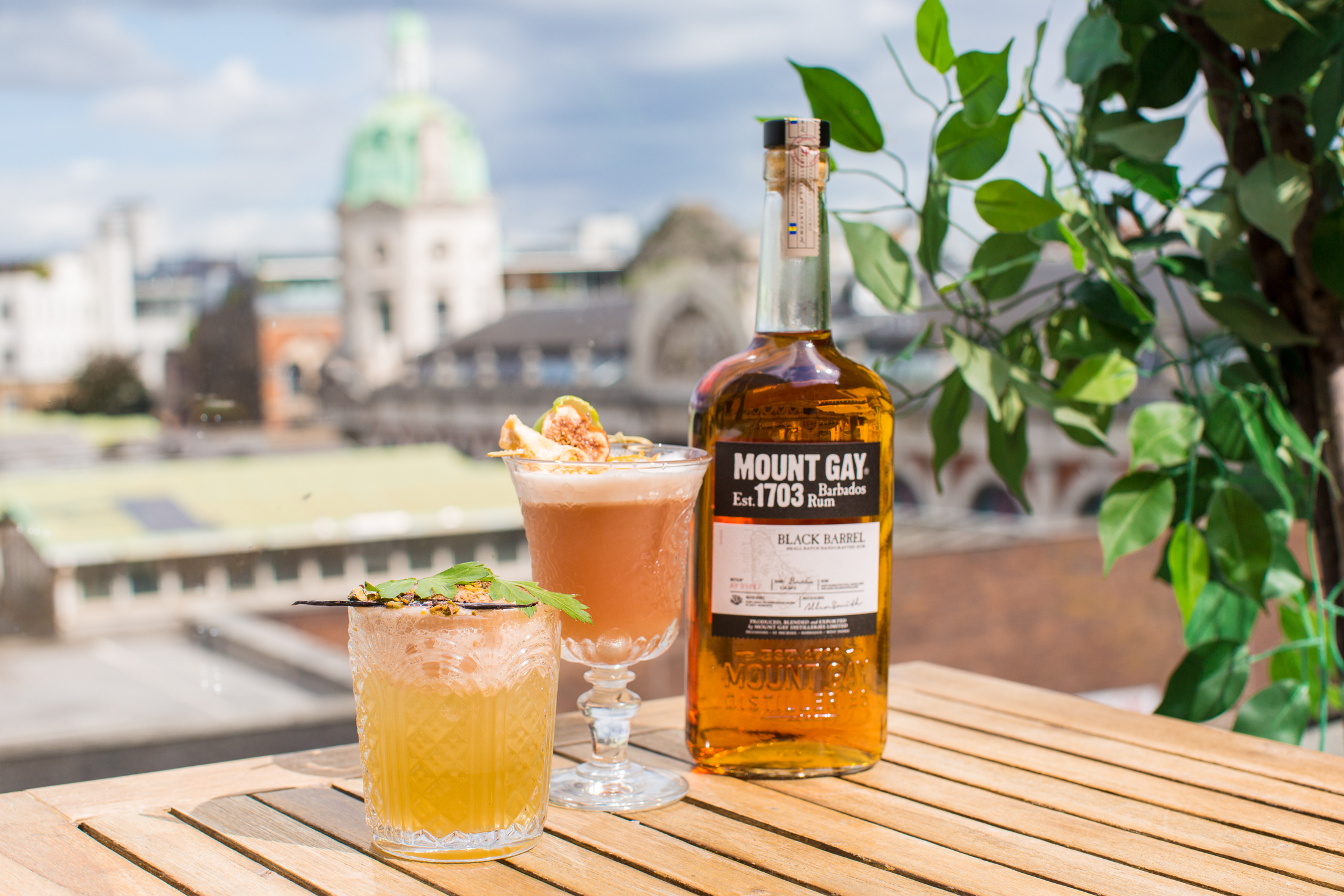 Mount Gay Rum Drink Recipes