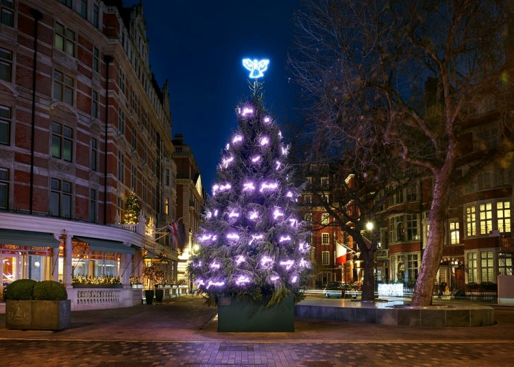 Mayfair Mount Street Christmas Tree Lights